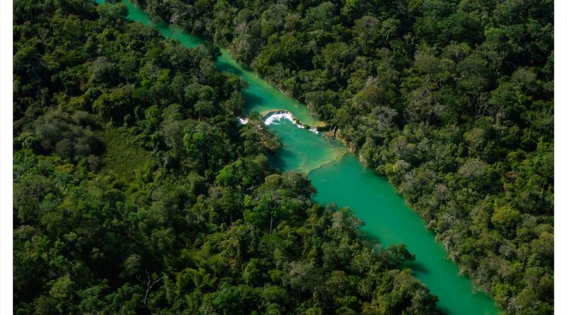 Pantanal, João Farkas, Revista Raiz